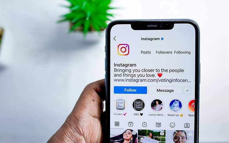Why Care About Instagram Links